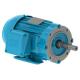 WEG Electric - 00736ET3E213JM-W22 - Motor & Control Solutions