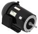 WEG Electric - 00512ET3E215JM-S - Motor & Control Solutions