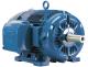 WEG Electric - 00312ET3E213T-W22 - Motor & Control Solutions