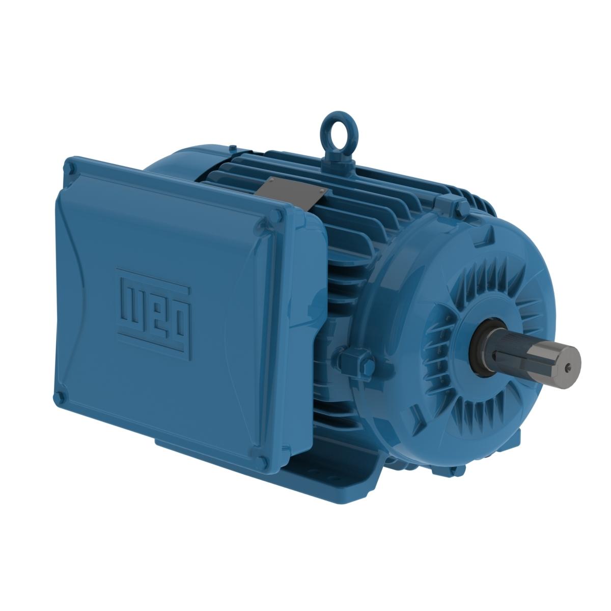 WEG Electric 01018ES1E215T-W22, General Purpose Motor